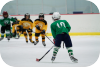 glenview,illinois,ice hockey,grizzlies,glenview ice center