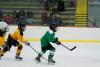 glenview,illinois,ice hockey,grizzlies,glenview ice center