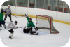 hockey,blazing seals,blazin,center ice of dupage,dupage,illinois, men's league,willy lopez