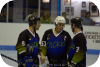 Gallery image: Chicago Roller Snakes Home Event