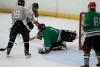 hockey,blazing seals,blazin,center ice of dupage,dupage,illinois, men's league,willy lopez