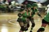 dupage derby dames,dupage,illinois,roller derby,roller skate,coachlite,roselle